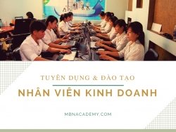 Tuyển dụng Nhân viên kinh doanh