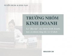 Tuyển dụng trưởng nhóm kinh doanh